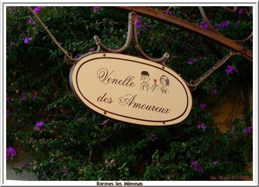 Ruelle de Bormes les Mimosas